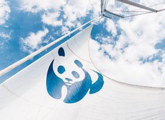 Blue Panda, το καράβι του WWF