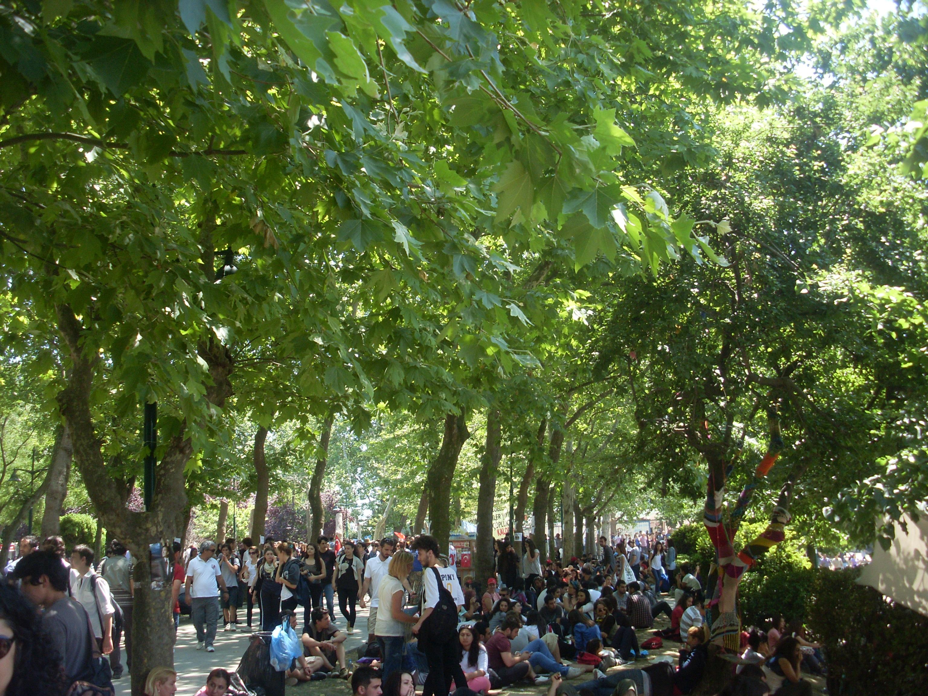 Διαδηλώσεις του 2013 στο Γκεζι Παρκ, Τουρκία