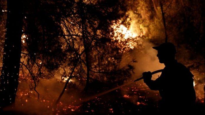 Πυρκαγιά στην Εύβοια